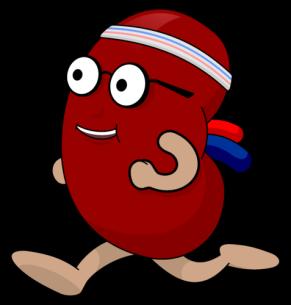kidney_guy_running